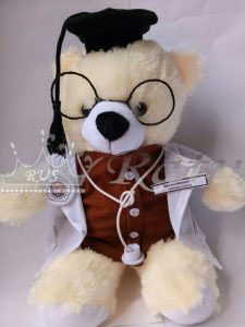 Boneka Profesi Dokter, Perawat, Boneka Profesi Wisuda